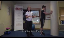 Standing Knee Flexion